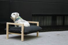 This modern, raised dog bed from HAT Design would look great -- and keep your pup comfy -- in just about any space!