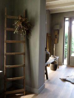 Binnenkijken bij Carola op www.dewemelaer.nl