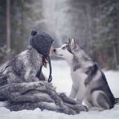 Wonderful All About The Siberian Husky Ideas. Prodigious All About The Siberian Husky Ideas. Animals For Kids, Animals And Pets, Cute Animals, Alaskan Malamute, Alaskan Husky, Girl And Dog, Husky Puppy, Belle Photo, Animal Photography