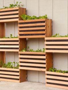 jardin vertical en boites en bois traité