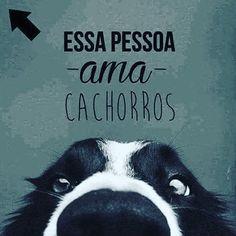 EU AMO!!!<3 #petmeupet #cachorro #amocachorro Animals And Pets, Baby Animals, Cute Animals, Love Pet, I Love Dogs, Crazy Dog Lady, Australian Cattle Dog, German Shepherd Puppies, Animal Quotes