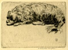 1911, Donald Shaw Maclaughlan.