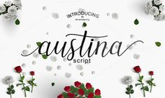Austina script by Amarlettering on @creativemarket. Price $12