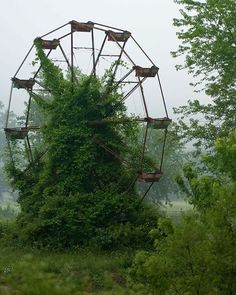 Abandoned Ferris Wheel reclaimed by nature.