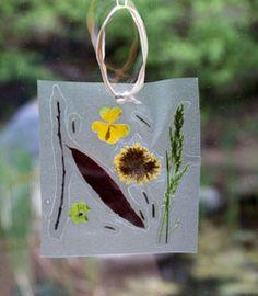 create a sun catcher using treasures found in nature