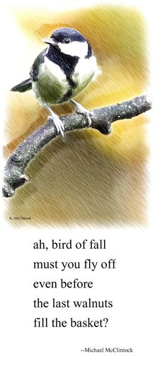 Tanka poem: ah, bird of fall-- by Michael McClintock.