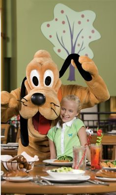Disney Fun in Orlando - 2 more months :)