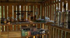 Booking.com: STF Kolarbyn Eco-Lodge , Skinnskatteberg, Švédsko - 29 Hodnotenie hostí . Rezervujte si svoj hotel teraz!