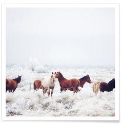 Winter Horseland en Affiche premium par Kevin Russ | JUNIQE
