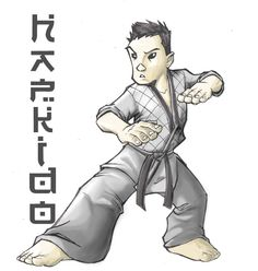 El Hapkido es un Arte Marcial coreano muy completo técnicamente, posee dentro de su arsenal técnico desde golpes y patadas hasta luxaciones, proyecciones, barridos, etc.