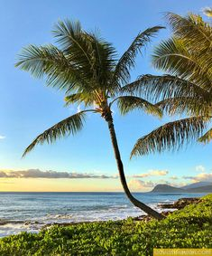 Are you going to Hawaii in (+ Hawaii Calendar Giveaway) - Go Visit Hawaii Visit Hawaii, In 2019, Giveaway, Calendar, Tours, Beach, Water, Life, Outdoor