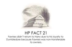 HP Facts - Harry Potter Vs. Twilight Photo (22276709) - Fanpop fanclubs