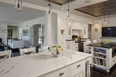 Evanston Project - traditional - kitchen - chicago - Jane Kelly, Designer for Airoom LL// bifold glass living room entry doors