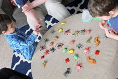 Bug party activities.