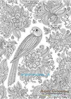 Find This Pin And More On Animal Adult Colouring Book Collection By Adultcolourings