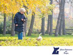 La importancia de tener una rutina con tu mascota.  LA MEJOR CLÍNICA VETERINARIA DE MÉXICO. Los perros necesitan rutinas en su vida, pues su instinto los guía en cada momento a saber qué les toca hacer. Por ello es recomendable que lo saques a la misma hora cada día y debes también hacerlo con la comida, el juego o el ejercicio. En Clínica Veterinaria del Bosque nos preocupamos por la salud de tu mascota, te invitamos a comunicarte con nosotros al teléfono 5360 3311 para conocer nuestros…