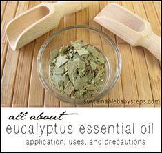 Eucalyptus essential oil uses, precautions, and application methods, via SustainableBabySteps.com