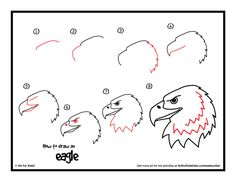 How to draw an eagle how to draw a realistic bald eagle head art for kids Drawing Lessons, Art Lessons, Art For Kids Hub, Art Hub, Easy Drawings For Kids, Drawing For Kids, Bird Drawings, Animal Drawings, Eagle Drawing