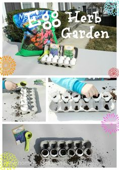 A fun Earth Day Project to do with the kids! Use egg shells to make little planters for herbs.Completely biodegradable and earth-friendly.