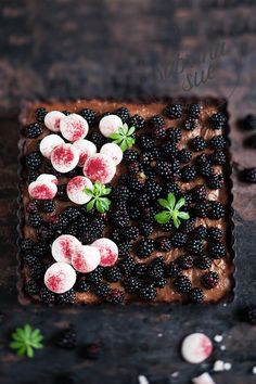 blackberry choc mousse tart