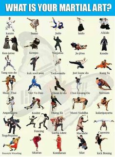 Image result for martial arts styles