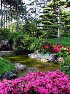 9 Ways to Save Money on Gardening