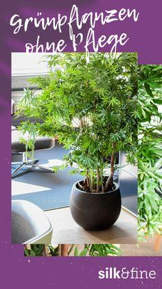 Mit unseren künstlichen Pflanzen kannst du jeden Raum – unabhängig von den Lichtverhältnissen – nach deinen Bedürfnissen gestalten. Nach intensiver Recherche haben wir uns für einen Lieferanten entschieden, welcher unseren hohen Ansprüche an Qualität gerecht wird und freuen uns, dir ab sofort eine weitere Möglichkeit in unserer Welt der Dekoration anzubieten. Ab Sofort, Jaco, Plants, Faux Plants, World, Nature, Decorations, Plant, Planting