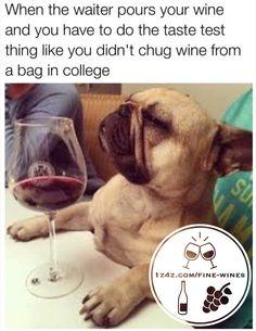 Wine Memes - Abounding Lifestyles