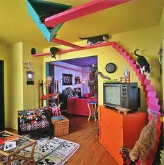 * Cool Cat Stuff * Build a cat gym on your ceiling with cat shelves. The cat tree is how the cats get up to it. Out of this world pet furniture ideas! Crazy Cat Lady, Crazy Cats, Hate Cats, Cat Tree House, House 2, Fun House, Kitty House, Cat Shelves, Book Shelves
