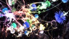 teamLab brings 20,000 Square Feet of Digital Art to California | The Creators Project