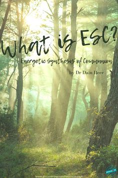 One can't explain it, you have to experience it first hand. Dr Dain Heer, co founder of Access Consciousness gifts a free ESC to the world once a year.    How does it get better than that?  To find out more click on the link.  What will you choose? Access Consciousness, Sunny Afternoon, It Gets Better, Point Of View, Co Founder, Communion, How To Find Out, About Me Blog, World