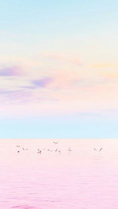 2019 minimalist wallpaper, pastel wallpaper ve wallpaper for your phone. Unique Iphone Wallpaper, Wallpaper For Your Phone, Tumblr Wallpaper, Pink Wallpaper, Screen Wallpaper, Cool Wallpaper, Sunset Wallpaper, Landscape Wallpaper, Trendy Wallpaper