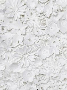 White origami and paper sculpture White Paper Flowers, Diy Flowers, Fake Flowers, Beautiful Flowers, Paper Crafting, Flower Arrangements, Backdrops, Diy Crafts, Pure Products