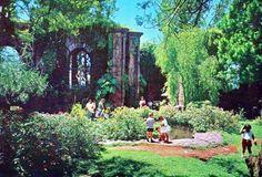 Ruinas de Cartago 1977
