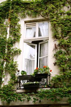 A lovely Parisian flat