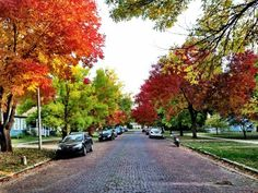 Lawrence, Kansas, USA Picture of Fall