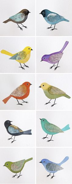 Birds With Map Wings Geninne D