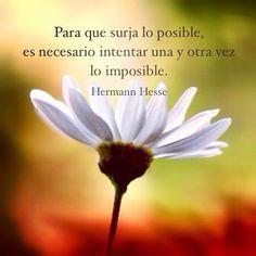 Para que surja lo posible, es necesario intentar una y otra vez lo imposible. Hermann Hesse