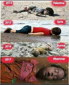 Yet, they call us terrorists!!