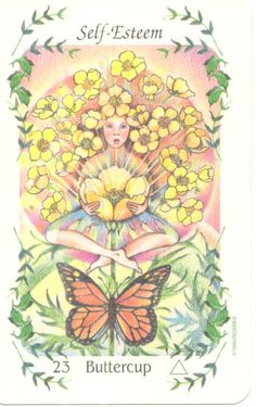 "Buttercup ""Self Esteem""  The Buttercup teaches us how to live in a state of ""unconditional love.""  Buttercups are said to be a favorite of  young children and faeries.   The energy of 'innocence' resonates  from this plant spirit.  The flower essence helps us learn to  accept our 'life gifts' in a pure way,  without attachment or judgment.   Buttercup helps us ""balance out"" when we undervalue ourselves.  All have the halo & hope of becoming  ""Children of Light."""