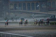 JA Midnight Express gana de rebote el Clásico Félix Bañuelos 2016 Resultados Articulo Hipodromo de Las Americas caballos cuarto de milla Clásico Félix Bañuelos 2016 Hipodromo de las Américas