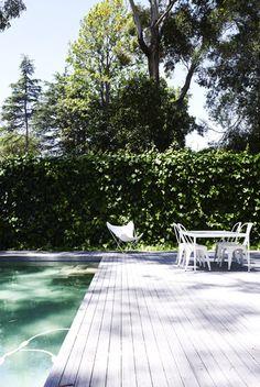 Megan Morton's pool