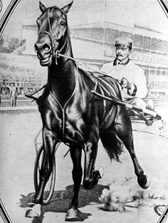 Dan Patch and driver.