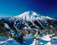 Ski Oregon, steep stuff