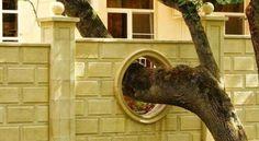 Le decorazioni stravaganti per dei muri
