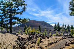 Chinyero Volcano, Tenerife,   Black Lava