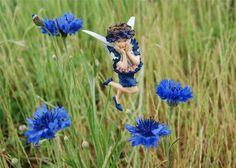 Cornflower fairie: 'Mid scarlet of poppies and gold of the corn, In wide-spreading fields were the Cornflowers born; But now I look round me, and what do I see?  That lilies and roses are neighbours to me! There's a beautiful lawn, there are borders and beds,  Where all kinds of flowers raise delicate heads; For this is a garden, and here, a Boy Blue, I live and am merry the whole summer through. My blue is the blue that I always have worn, And still I remember the poppies and corn.
