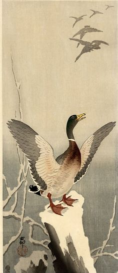 hanga gallery . . . torii gallery: Mallard on Stump by Ohara Koson