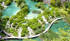 Plitvice Lakes National Park Croatia tree outdoor water nature reserve body of water ecosystem watercourse River Nature tarn stream Forest plant Lake rapid surrounded water feature national park pond hillside wooded lush Croatia National Park, Plitvice Lakes National Park, European Destination, European Vacation, Best Swimming, Swimming Holes, Seen, Croatia Travel, Dubrovnik