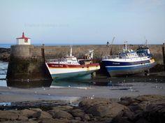 Barfleur: Las rocas, las gaviotas, barcos de pesca durante la marea baja, el muelle del puerto y el fuego - France-Voyage.com